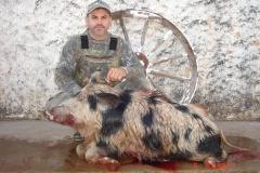 hog-fl